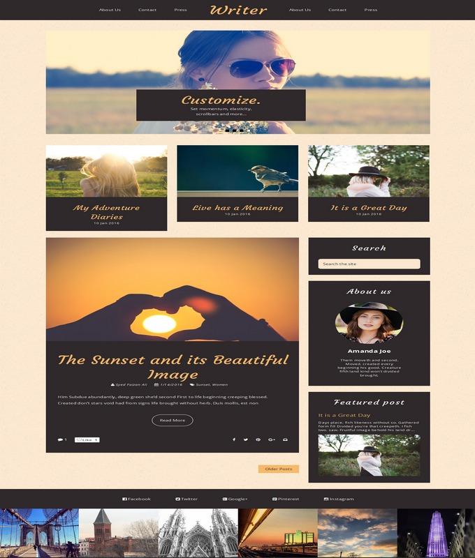 writer blogger template 2016