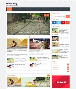 micro mag blogger template