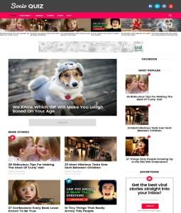 socio viral buzz blogger template