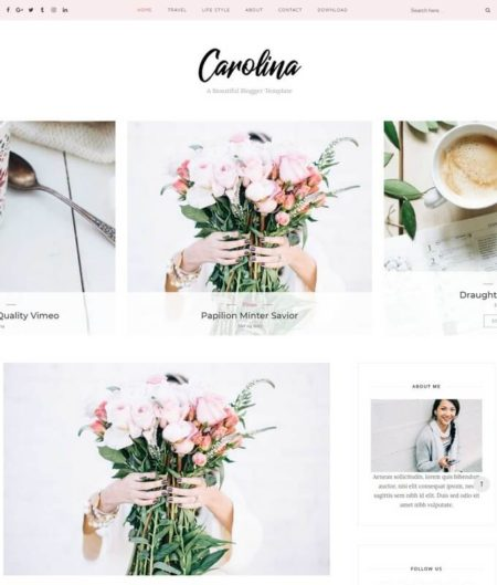 Carolina Blogger Template